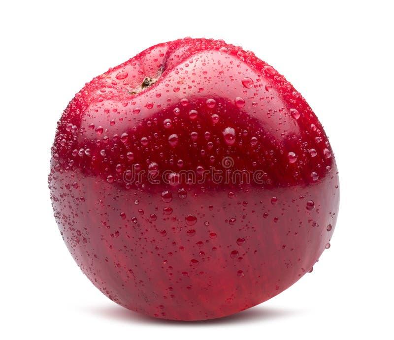 Красное яблоко в падениях воды изолированное на белой предпосылке стоковые изображения