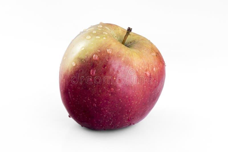 Красное яблоко изолированное на белой предпосылке стоковое изображение