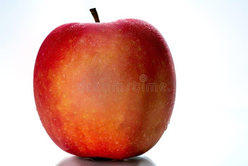 Красное яблоко с водой падает на кожу изолированную на белой предпосылке с космосом экземпляра Здоровый плодоовощ и здоровая конц стоковая фотография rf