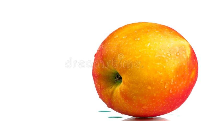 Красное яблоко с водой падает на кожу изолированную на белой предпосылке с космосом экземпляра Здоровый плодоовощ и здоровая конц стоковое фото