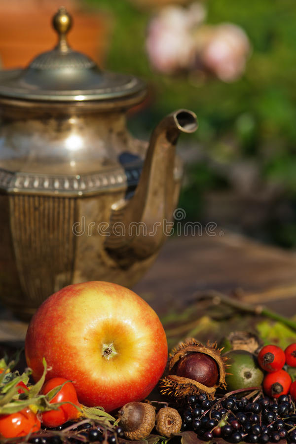 Красное яблоко с одичалыми плодоовощами и чайником стоковые изображения rf