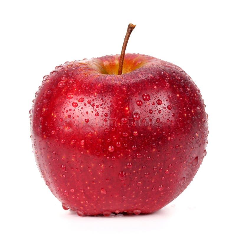 Красное яблоко в падениях воды на белой предпосылке стоковые фото