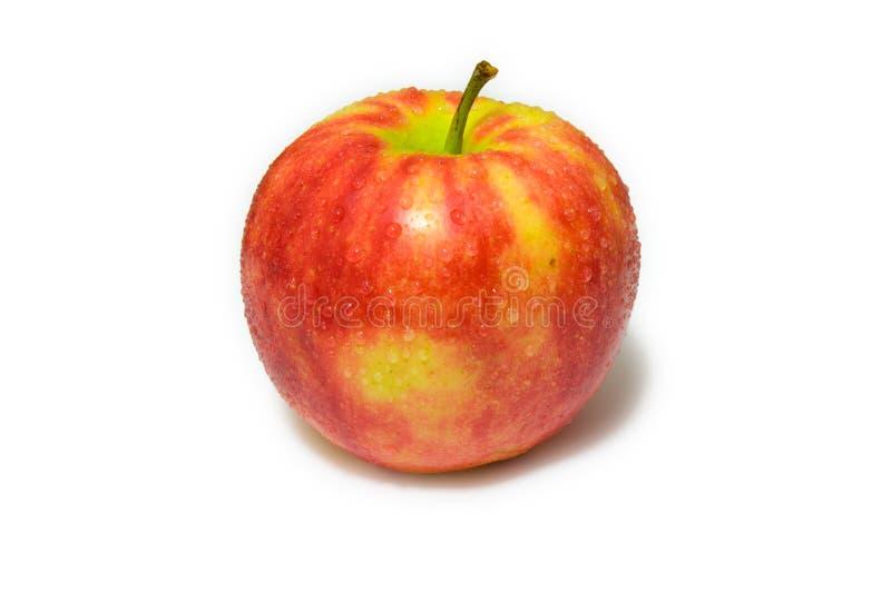 Красное яблоко с водой падает на белую предпосылку (малая тень) стоковые фотографии rf