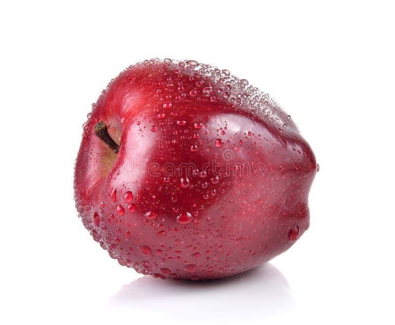 Красное яблоко с водой падает на белую предпосылку стоковое изображение rf