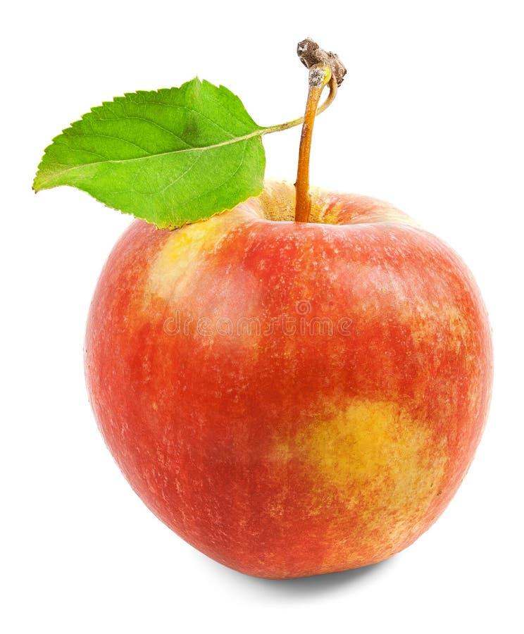 Красное яблоко с зелеными лист на белой предпосылке стоковые фото