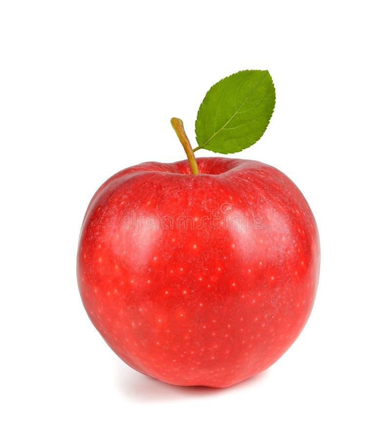 Красное яблоко с листьями стоковые изображения rf