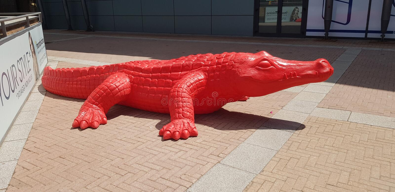 Красное crocrodile стоковое изображение rf