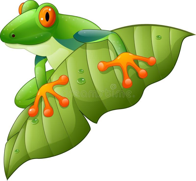 Красно-наблюданная шаржем древесная лягушка Амазонки на зеленых лист иллюстрация вектора