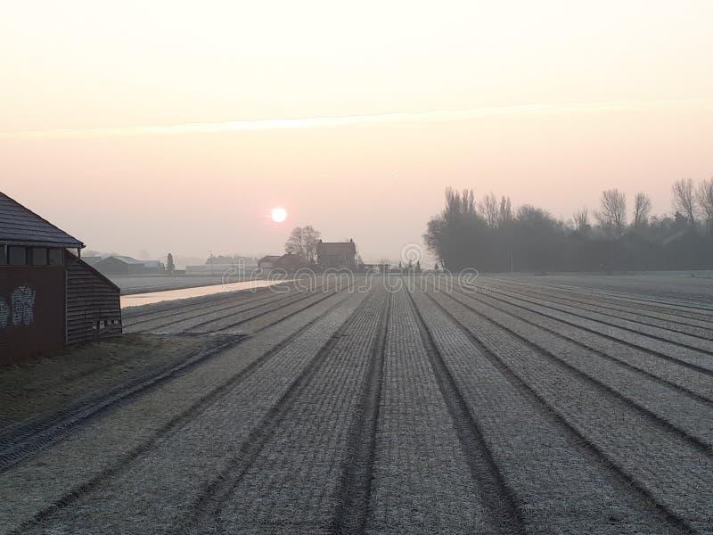 Красно-холодное утро стоковая фотография