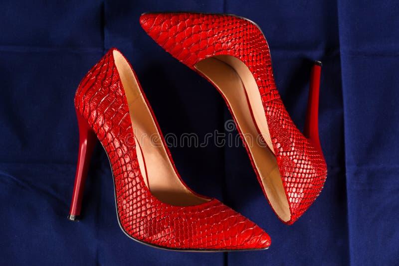 Красные ботинки snakeskin стоковое фото