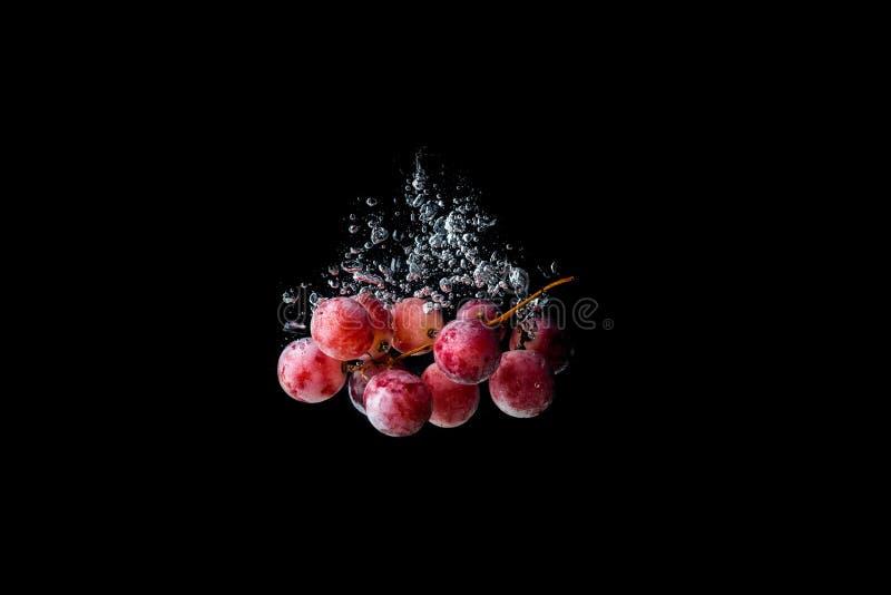 Красные виноградины тонуть в воду на черной предпосылке стоковая фотография rf