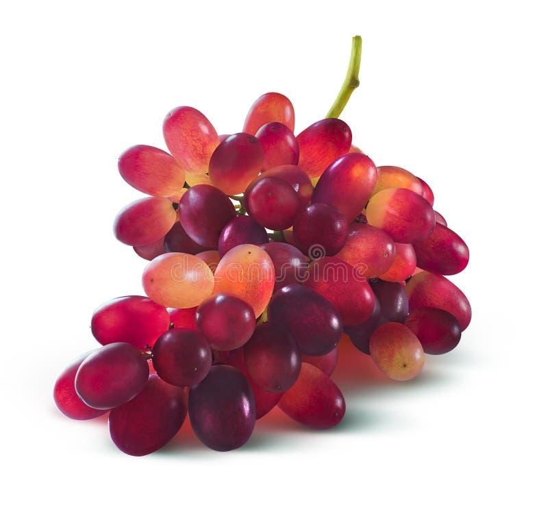 Красные виноградины не образовывают никакие лист изолированные на белой предпосылке стоковое изображение