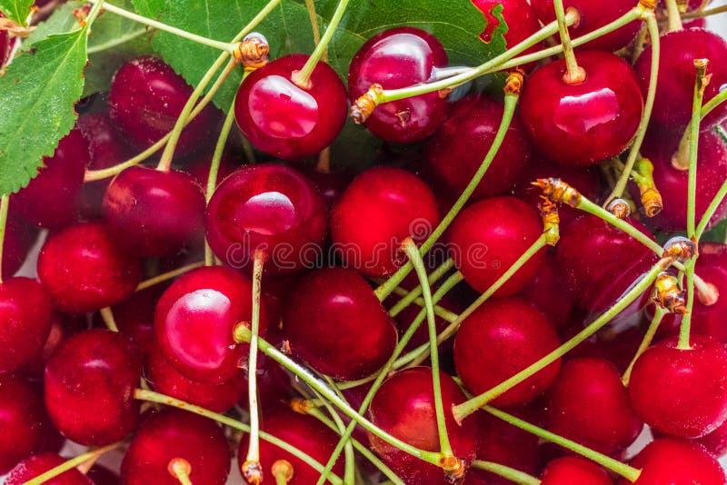 Красные вишни в воде с зелеными листьями стоковое изображение rf