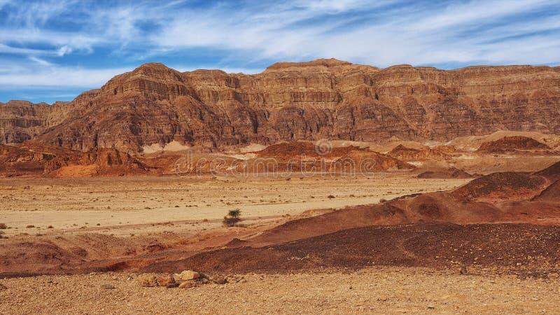 Красные горы в пустыне Негев стоковые фотографии rf