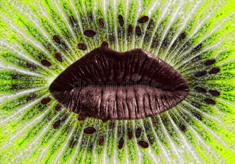 Красные губы женщины на зрелом зеленом кивие отрезают предпосылку стоковое фото rf