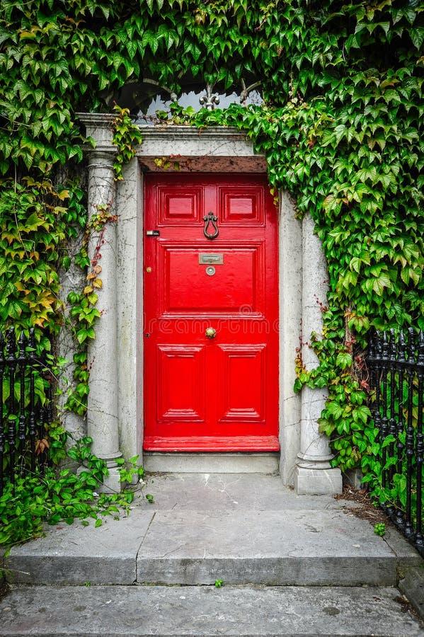 Красные дверь и плющ стоковые изображения