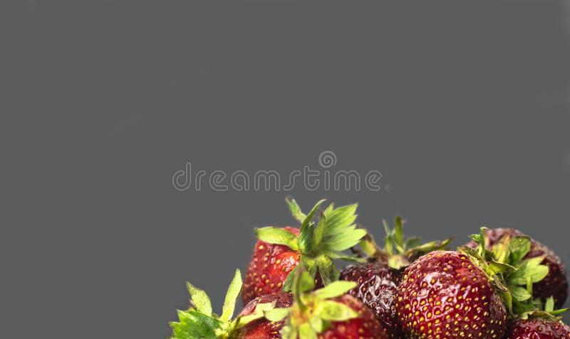 Красные зрелые и сладкие клубники на сером конце-вверх предпосылки стоковые изображения