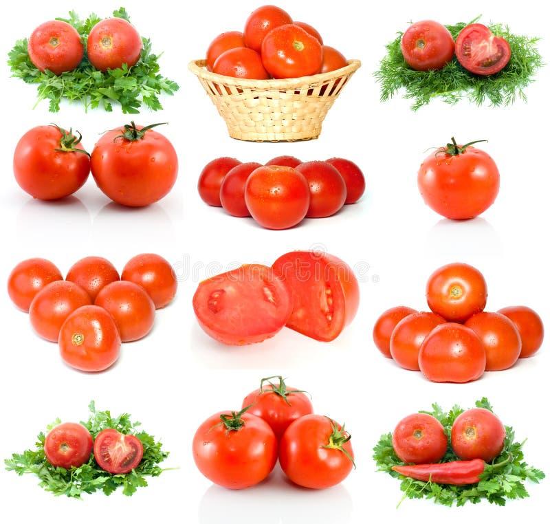 Download красные зрелые томаты комплекта Стоковое Фото - изображение насчитывающей листья, wickerwork: 6868790
