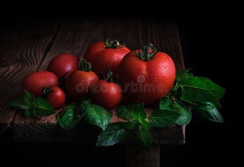 Красные зрелые томаты с падениями воды и листьев свежего базилика на деревянном столе r стоковые изображения rf
