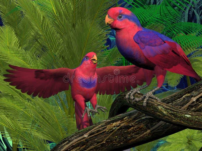 Красные и голубые попугаи Lory иллюстрация штока