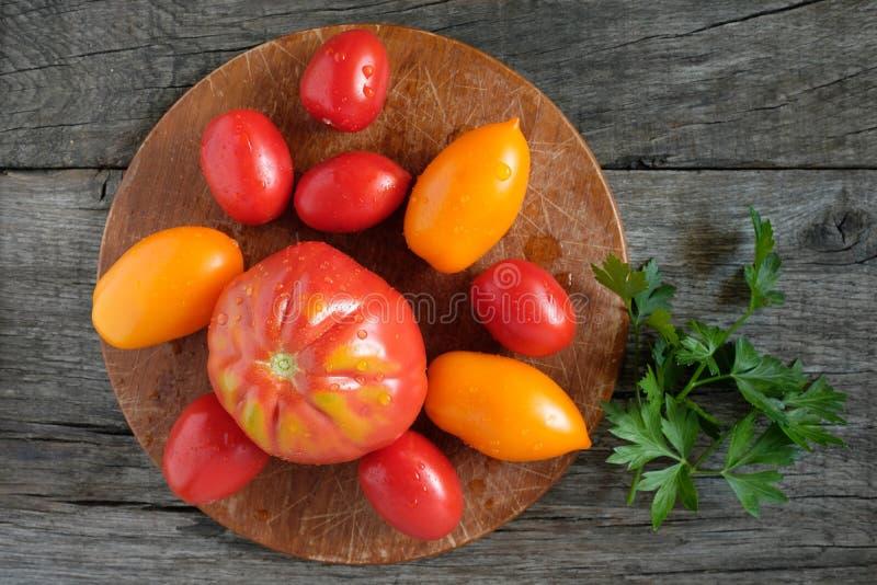 Красные и желтые томаты с падениями воды стоковые изображения