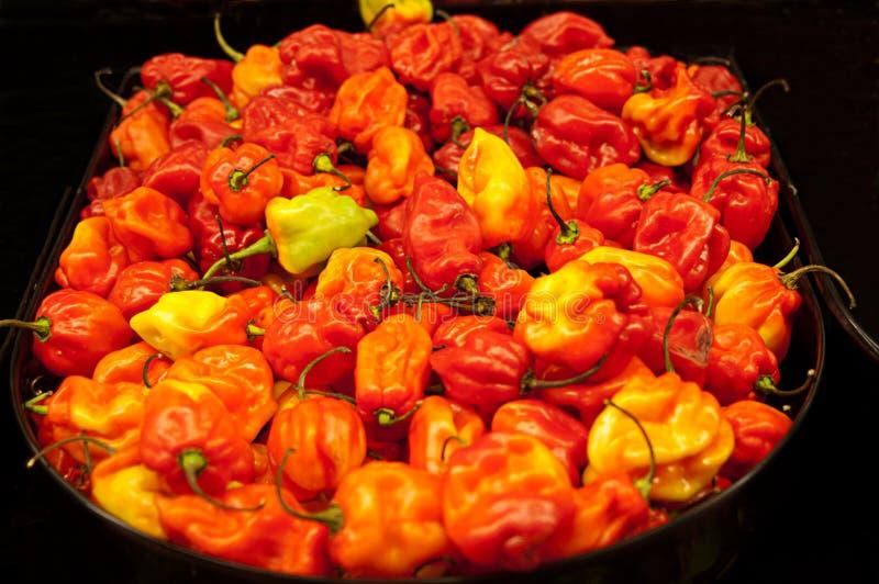 Красные и желтые перцы стоковая фотография