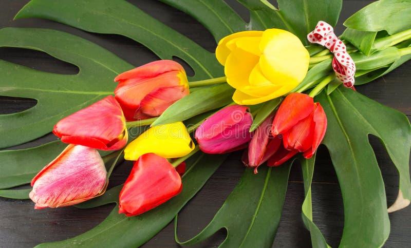 Красные и желтые тюльпаны на зеленых лист стоковая фотография rf