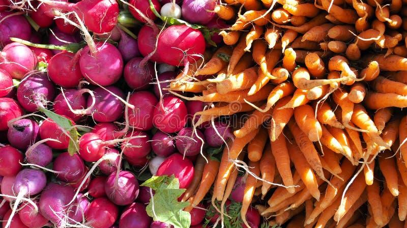 Красные и пурпурные редиски, оранжевые моркови для продажи на рынке сельскохозяйственной продукции в Нью-Йорке Яркая предпосылка стоковая фотография