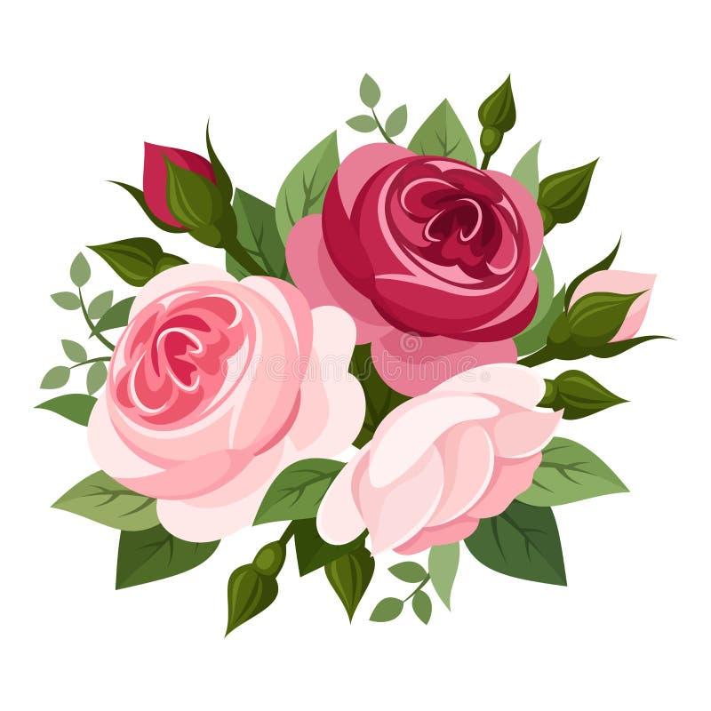 Красные и розовые розы.  иллюстрация вектора