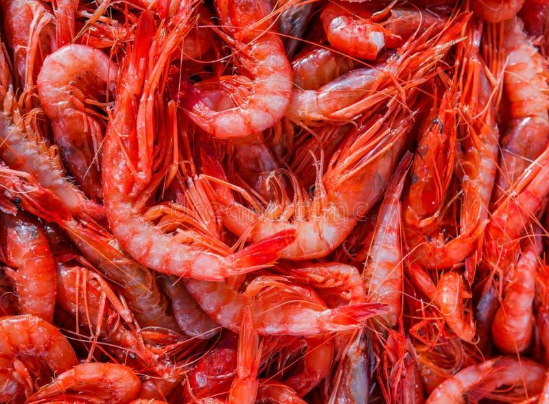 Красные креветки на рынке стоковое фото rf