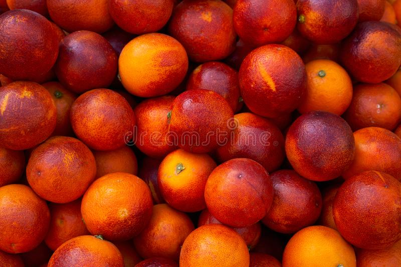 красные кровопролитные апельсины от среднеземноморского стоковое фото