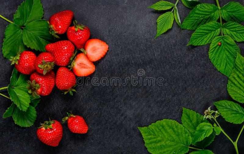 Красные клубники и листья зеленого цвета стоковые изображения