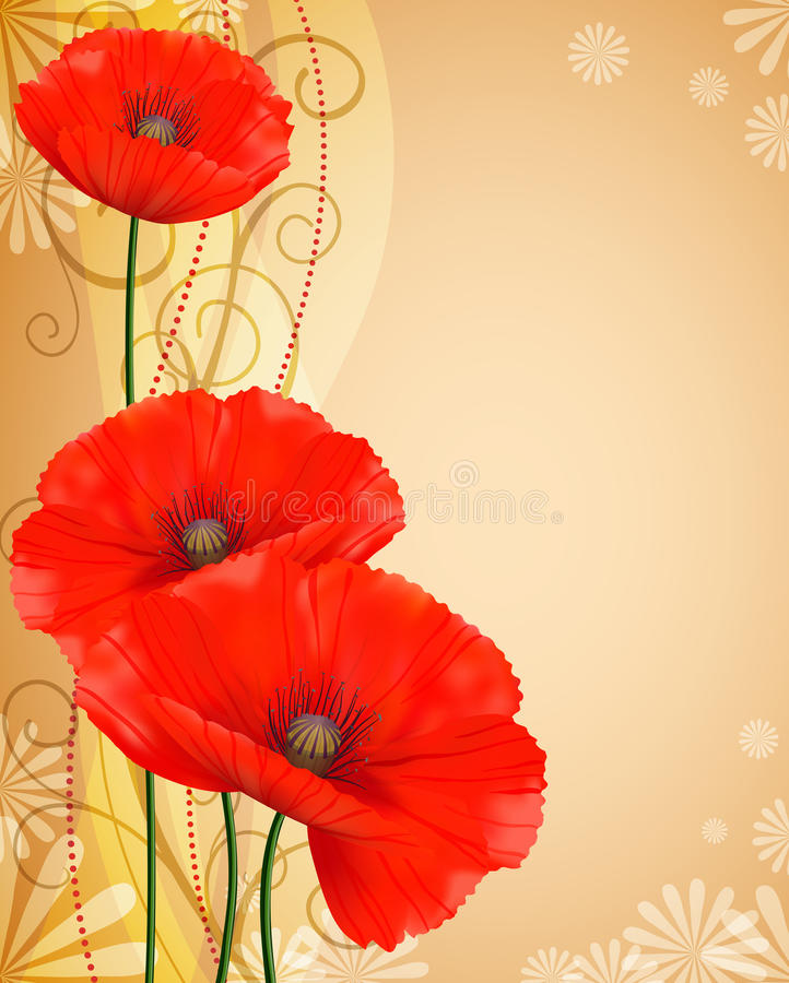 Красные маки gentle коричневая предпосылка стоковое изображение rf