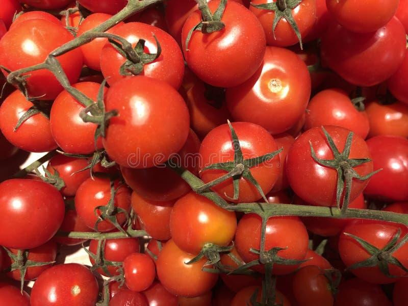 Красные, маленькие вишневые помидоры на черном фоне Фоновая текстура: спелые помидоры с шпригами Сочные овощи, кучка бриг стоковое фото rf