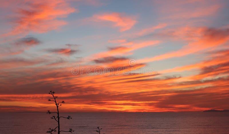 Красные небеса на ноче стоковая фотография