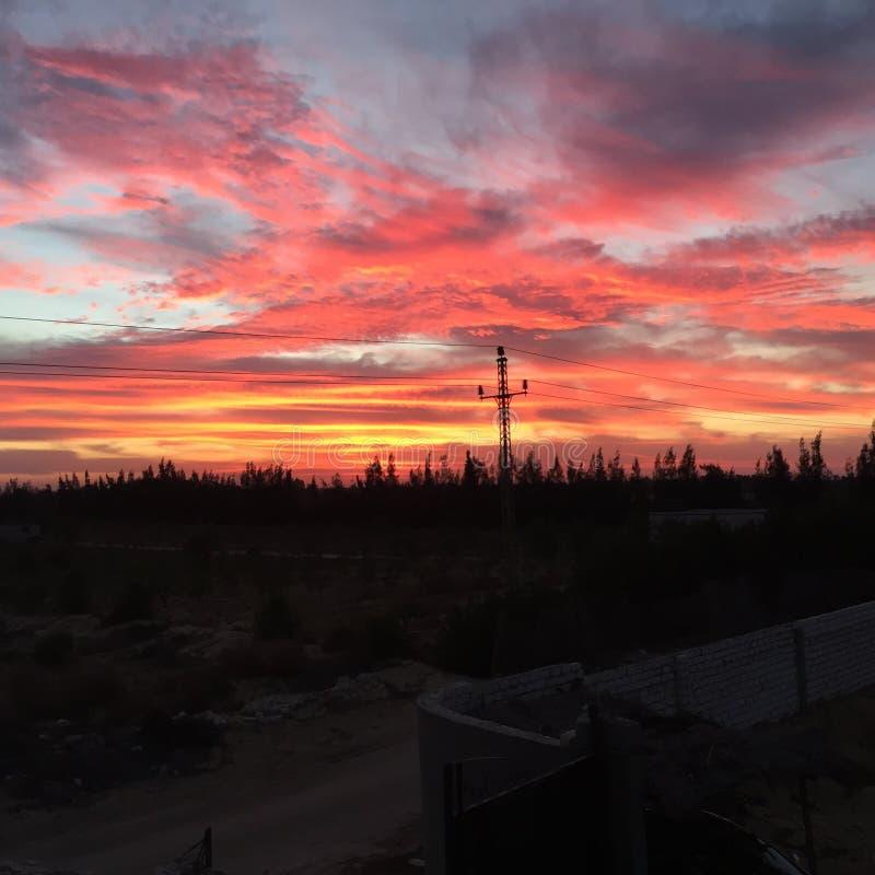 Красные облака деревьев захода солнца природы неба стоковое фото rf