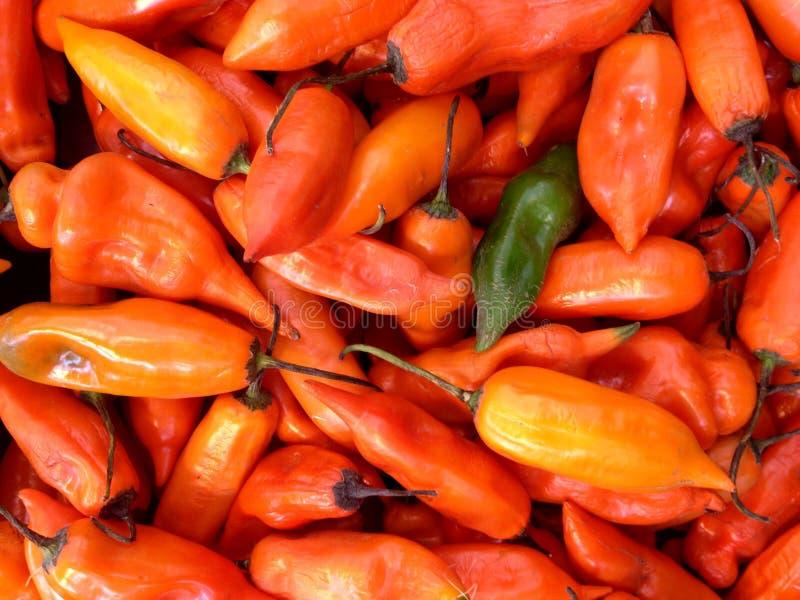 Красные перцы и один зеленый перец на рынке стоковое изображение rf