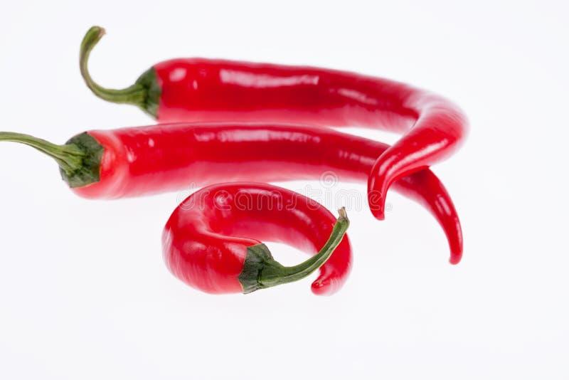 Красные перцы peperoni изолированные на белой предпосылке стоковые изображения