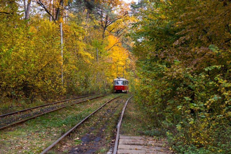 Красные рельсы трамвая на кривых стоковое изображение