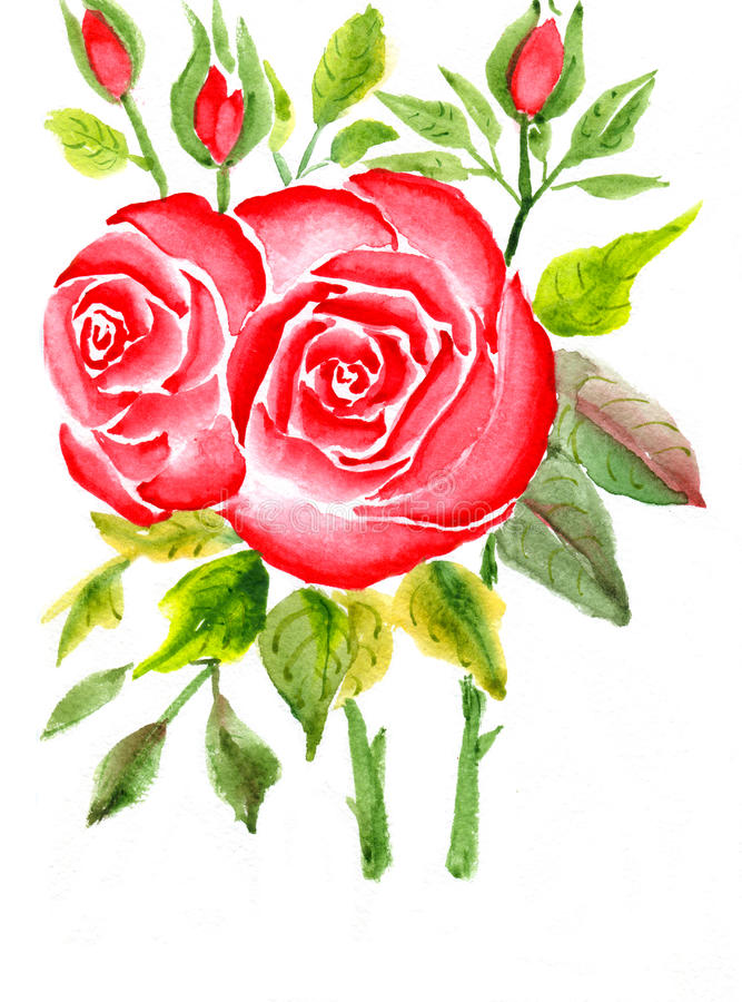 красные розы иллюстрация штока