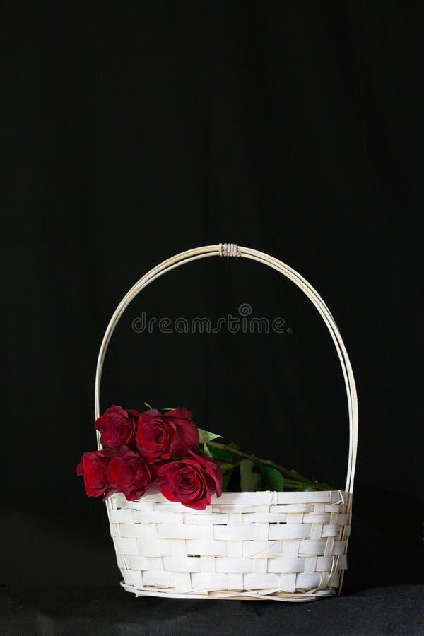 красные романтичные розы стоковые фотографии rf