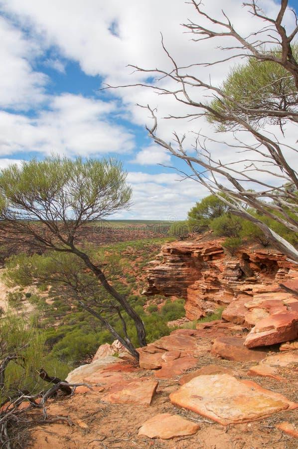 Красные скалы: Kalbarri, западная Австралия стоковое изображение rf