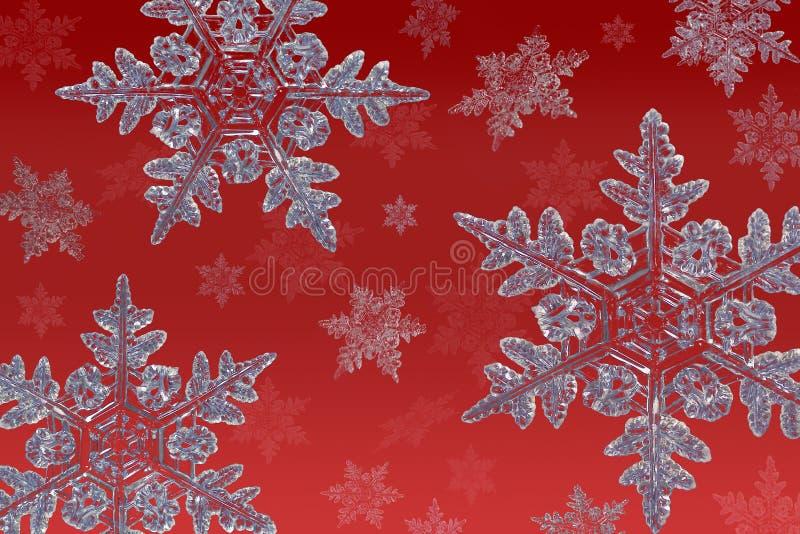 красные снежинки стоковая фотография