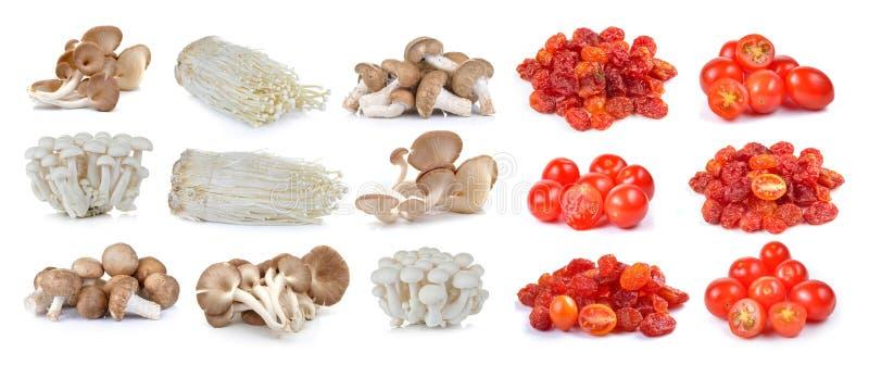 Красные томаты вишни, высушенный томат и гриб шиитаке, Enoki стоковое изображение rf