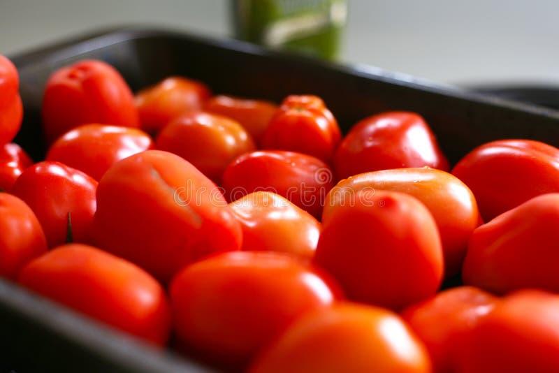 Красные томаты готовые для жарить в духовке для того чтобы сделать passata стоковая фотография