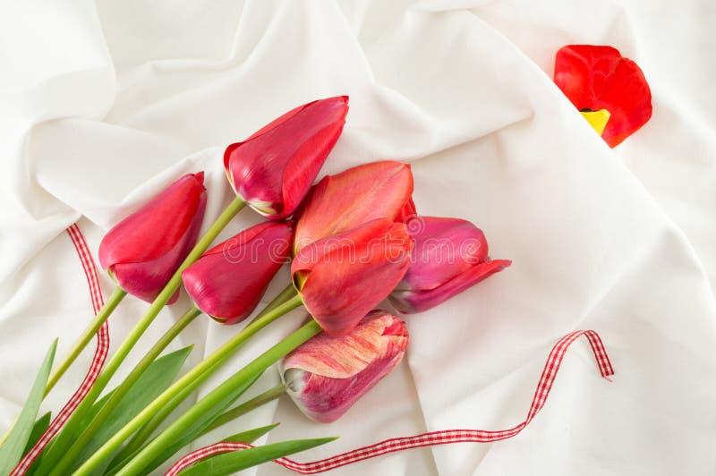 Красные тюльпаны на белой ткани стоковая фотография