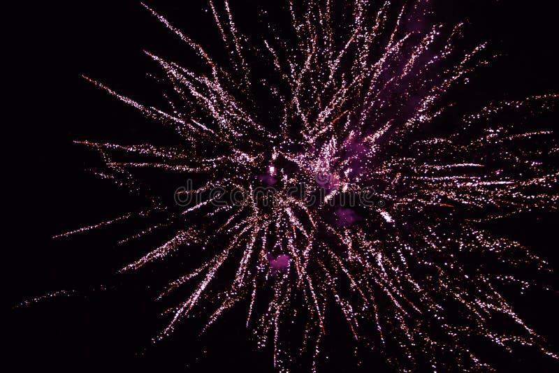 Красные фейерверки в ночном небе, салют стоковые фотографии rf