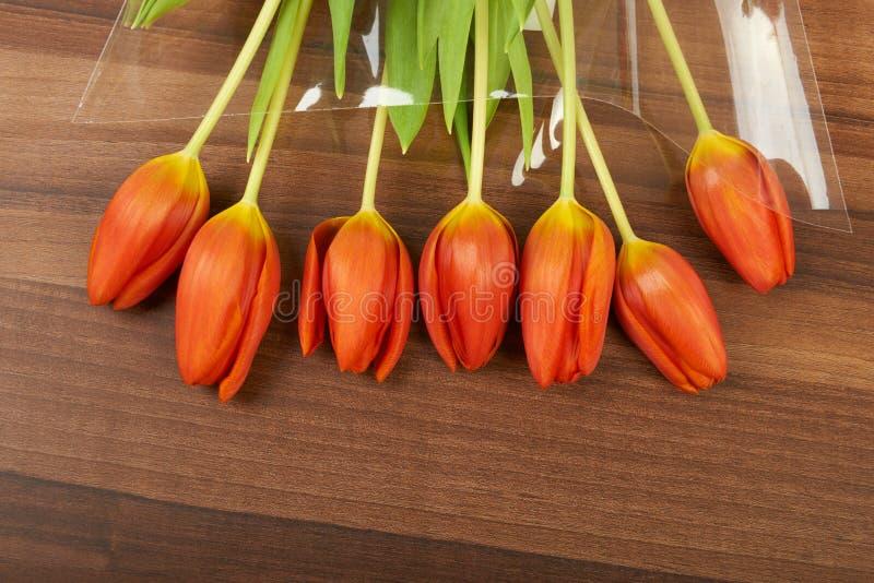 Красные цветки тюльпана дальше, предпосылка стоковое изображение rf