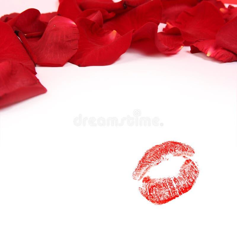 красные цветы стоковое изображение