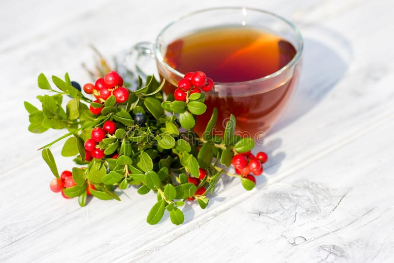 Красные черника и голубики с чаем на деревянной предпосылке. Фокус на ягодах стоковая фотография